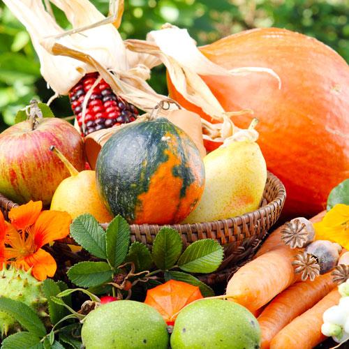 Herbstgemüse